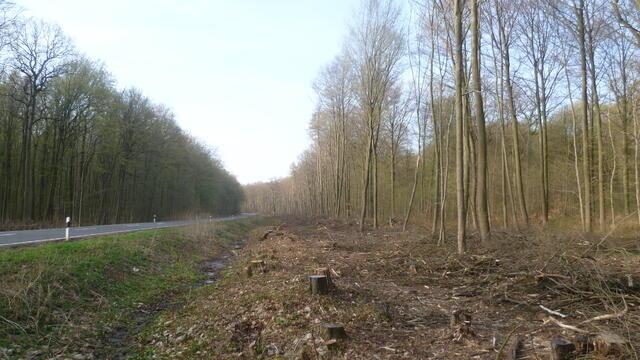 Etwas Neues genug Biomasse aus der Pflege von Straßenrändern: eine nachhaltige #TF_51